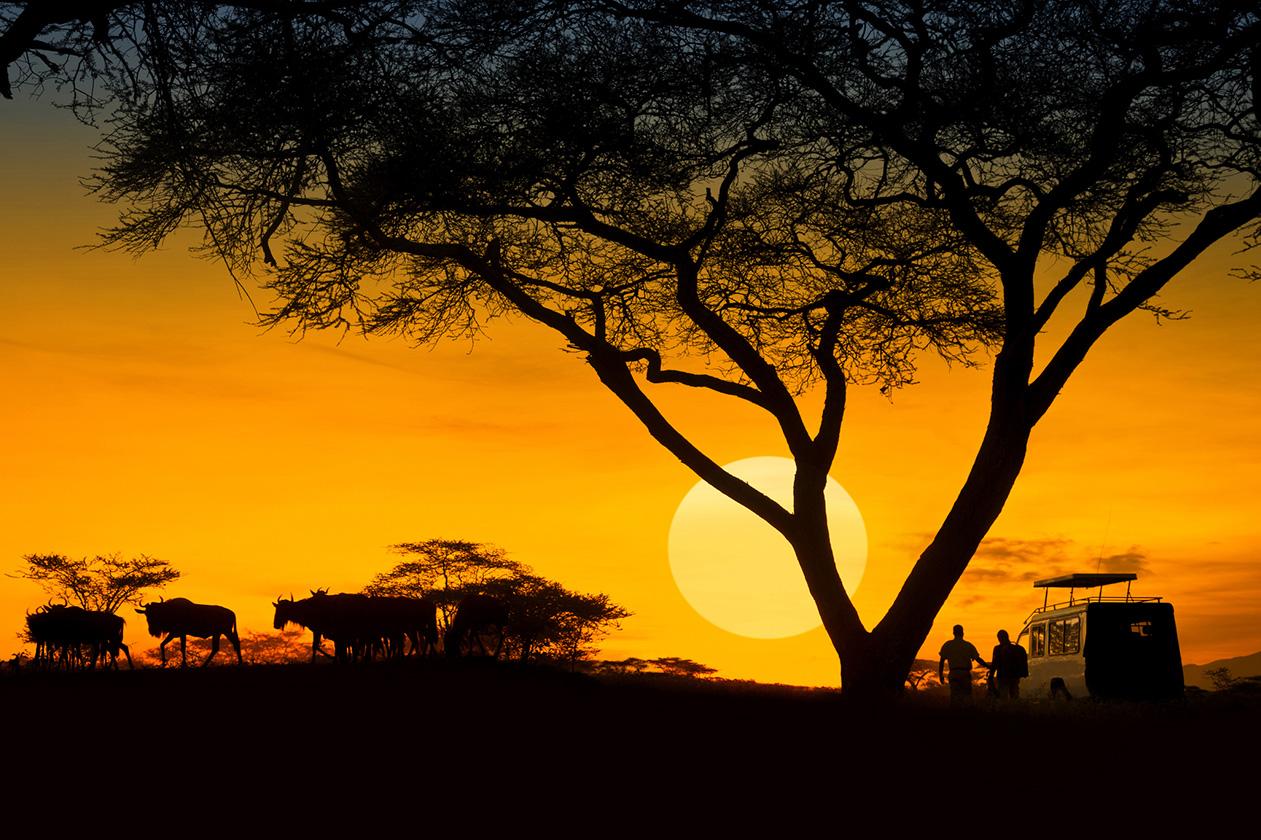 Kenya – Case Study